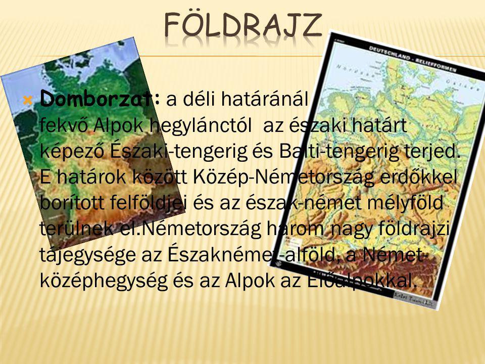  Domborzat: a déli határánál fekvő Alpok hegylánctól az északi határt képező Északi-tengerig és Balti-tengerig terjed.