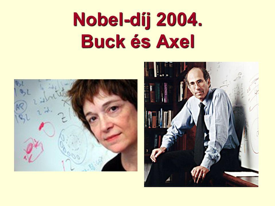 Nobel-díj 2004. Buck és Axel