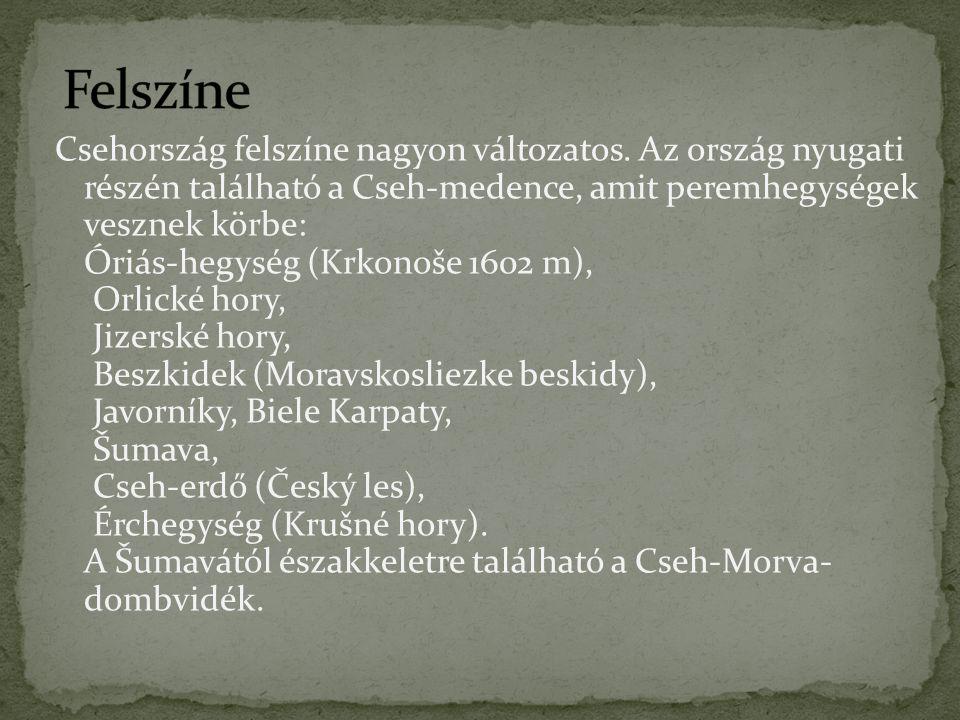 Csehország felszíne nagyon változatos. Az ország nyugati részén található a Cseh-medence, amit peremhegységek vesznek körbe: Óriás-hegység (Krkonoše 1