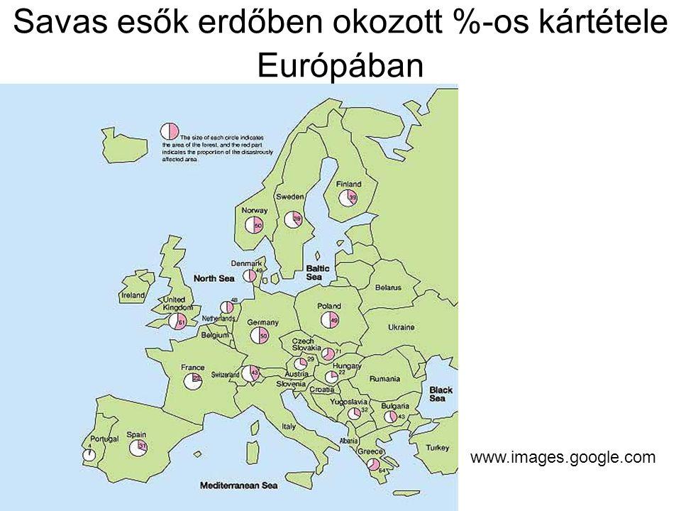 Savas esők erdőben okozott %-os kártétele Európában www.images.google.com