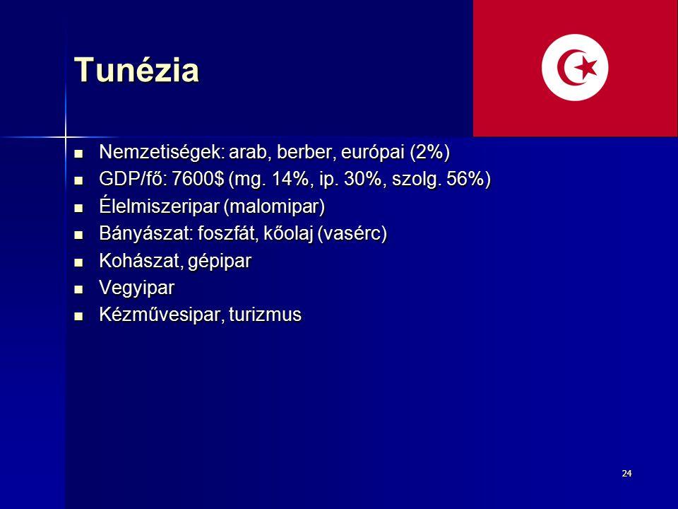 2424Tunézia Nemzetiségek: arab, berber, európai (2%) Nemzetiségek: arab, berber, európai (2%) GDP/fő: 7600$ (mg. 14%, ip. 30%, szolg. 56%) GDP/fő: 760