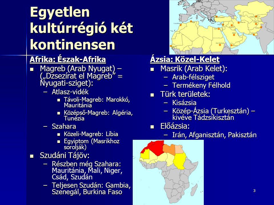 44 Egyenlőtlen benépesültség Száraz sivatagos – félsivatagos éghajlat  34 fő/km 2, de népesség erőteljes földrajzi koncentrációja Száraz sivatagos – félsivatagos éghajlat  34 fő/km 2, de népesség erőteljes földrajzi koncentrációja Sűrűbben lakott területek: Sűrűbben lakott területek: –Mediterrán tengerpart: Földközi-tenger –Termékeny folyómenti területek: Nílus, Eufrátesz, Tigris, Amu- darja, Szír-darja, Indus Ritkán lakott területek: Ritkán lakott területek: –Szahara –Mérsékelt övi sivatagok