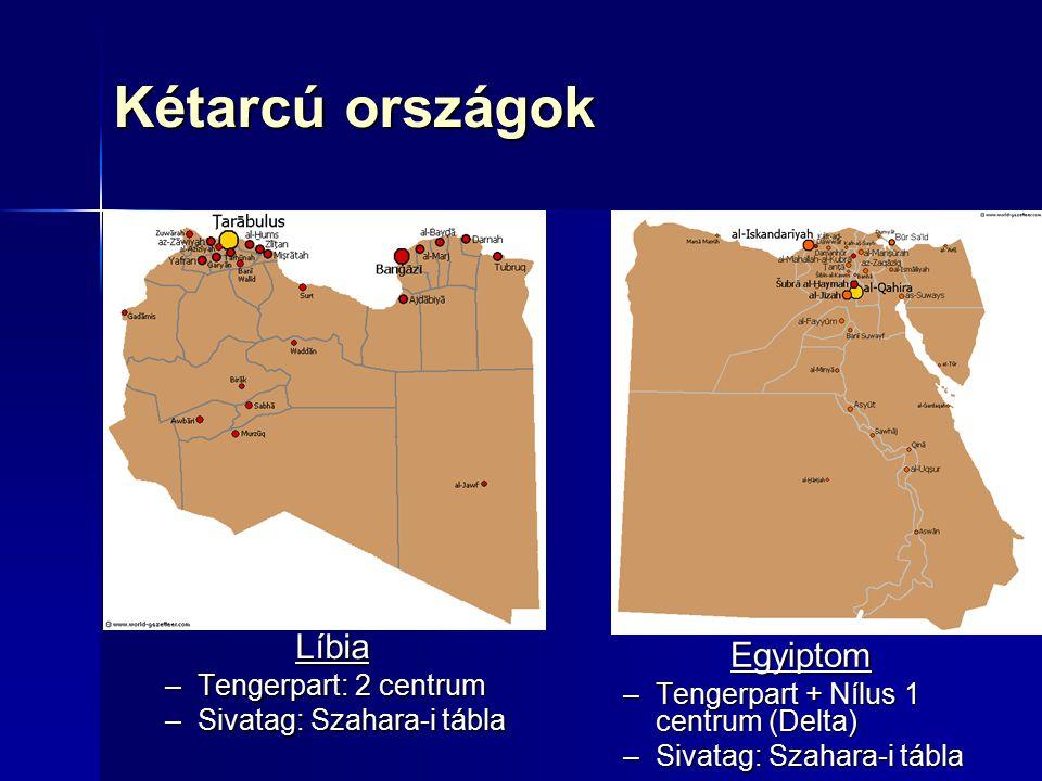 Népességföldrajz Népesség egyenlőtlen eloszlása Népesség egyenlőtlen eloszlása –Líbia: 2 sűrűn lakott tengerparti terület (Tripolitánia nyugaton és Kiraneika keleten) + ritkán lakott Szahara –Egyiptom: 2 sűrűn lakott terület (Nílus- delta, Nílus-menti terület) + ritkán lakott Szahara Gyors népességnövekedés – fiatal ország (34% 14 év alatti) Gyors népességnövekedés – fiatal ország (34% 14 év alatti) Etnikailag meglehetősen homogén Etnikailag meglehetősen homogén Vendégmunkások Vendégmunkások Vallás: szunnita mohamedán Vallás: szunnita mohamedán