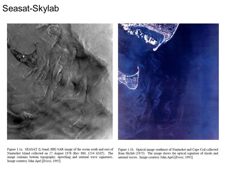 Seasat-Skylab