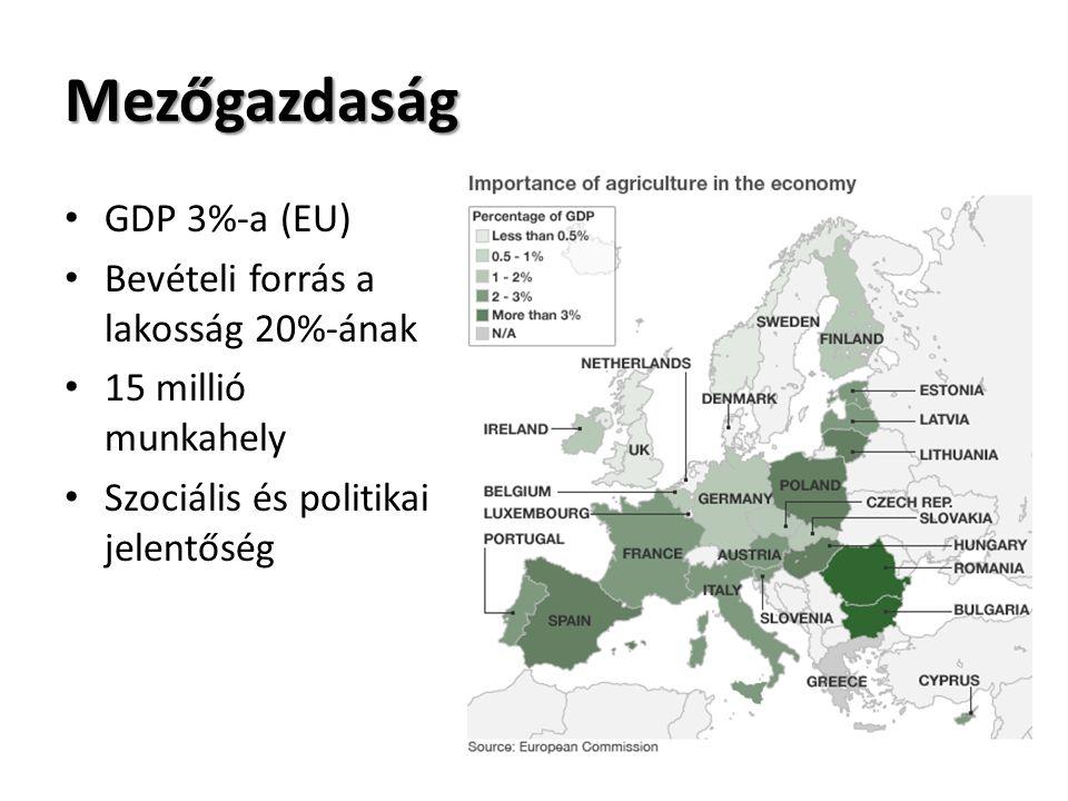 Mezőgazdaság GDP 3%-a (EU) Bevételi forrás a lakosság 20%-ának 15 millió munkahely Szociális és politikai jelentőség