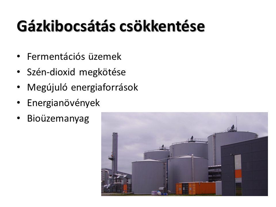 Gázkibocsátás csökkentése Fermentációs üzemek Szén-dioxid megkötése Megújuló energiaforrások Energianövények Bioüzemanyag