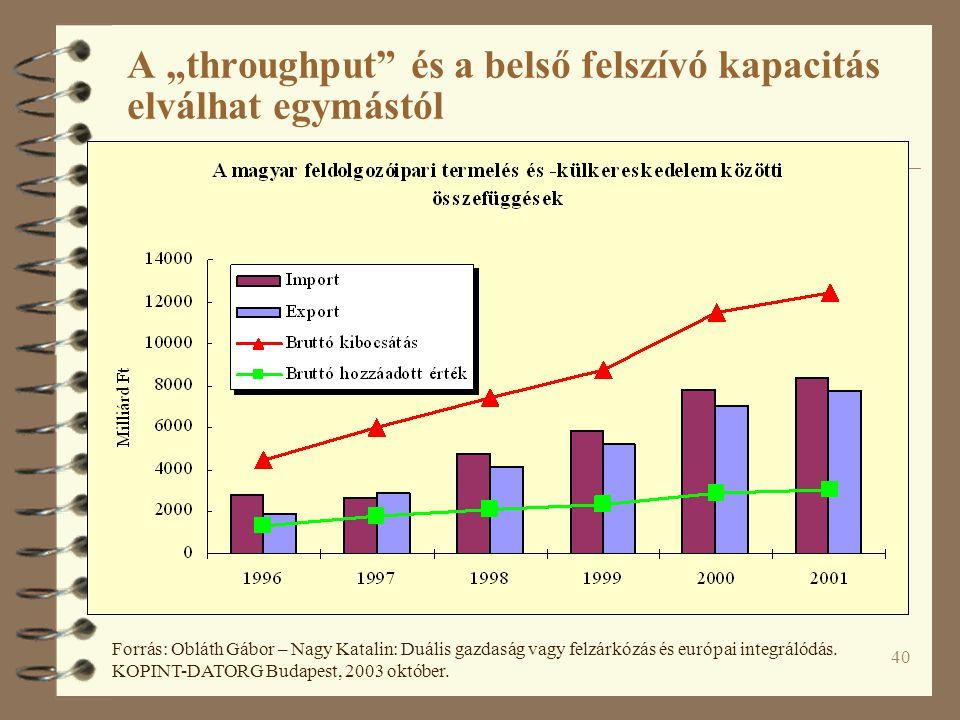 """40 A """"throughput és a belső felszívó kapacitás elválhat egymástól Forrás: Obláth Gábor – Nagy Katalin: Duális gazdaság vagy felzárkózás és európai integrálódás."""