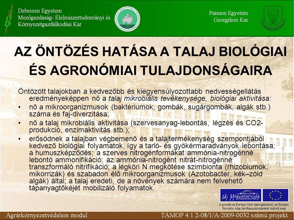 AZ ÖNTÖZÉS HATÁSA A TALAJ BIOLÓGIAI ÉS AGRONÓMIAI TULAJDONSÁGAIRA Öntözött talajokban a kedvezőbb és kiegyensúlyozottabb nedvességellátás eredményeképpen nő a talaj mikrobiális tevékenysége, biológiai aktivitása: nő a mikroorganizmusok (baktériumok, gombák, sugárgombák, algák stb.) száma és faj-diverzitása; nő a talaj mikrobiális aktivitása (szervesanyag-lebontás, légzés és CO2- produkció, enzimaktivitás stb.); erősödnek a talajban végbemenő és a talajtermékenység szempontjából kedvező biológiai folyamatok, így a tarló- és gyökérmaradványok lebontása; a humuszképződés; a szerves nitrogénformákat ammónia-nitrogénné lebontó ammonifikáció; az ammónia-nitrogént nitrát-nitrogénné transzformáló nitrifikáció; a légköri N megkötése szimbionta (rhizobiumok, mikorrizák) és szabadon élő mikroorganizmusok (Azotobacter, kék–zöld algák) által; a talaj eredeti, de a növények számára nem felvehető tápanyagtőkéjét mobilizáló folyamatok.
