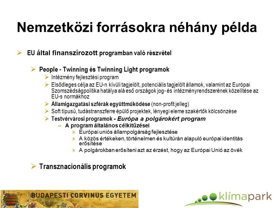 Nemzetközi forrásokra néhány példa  EU által finanszírozott programban való részvétel  People - Twinning és Twinning Light programok  Intézmény fejlesztési program  Elsődleges célja az EU-n kívüli tagjelölt, potenciális tagjelölt államok, valamint az Európai Szomszédságpolitika hatálya alá eső országok jog- és intézményrendszerének közelítése az EU-s normákhoz  Államigazgatási szférák együttműködése (non-profit jelleg)  Soft típusú, tudástranszferre épülő projektek, lényegi eleme szakértők kölcsönzése  Testvérvárosi programok - Európa a polgárokért program –A program általános célkitűzései »Európai uniós állampolgárság fejlesztése »A közös értékeken, történelmen és kultúrán alapuló európai identitás erősítése »A polgárokban erősíteni azt az érzést, hogy az Európai Unió az övék  Transznacionális programok