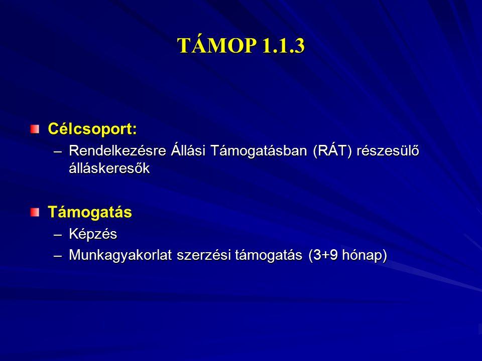 TÁMOP 1.1.3 Célcsoport: –Rendelkezésre Állási Támogatásban (RÁT) részesülő álláskeresők Támogatás –Képzés –Munkagyakorlat szerzési támogatás (3+9 hóna