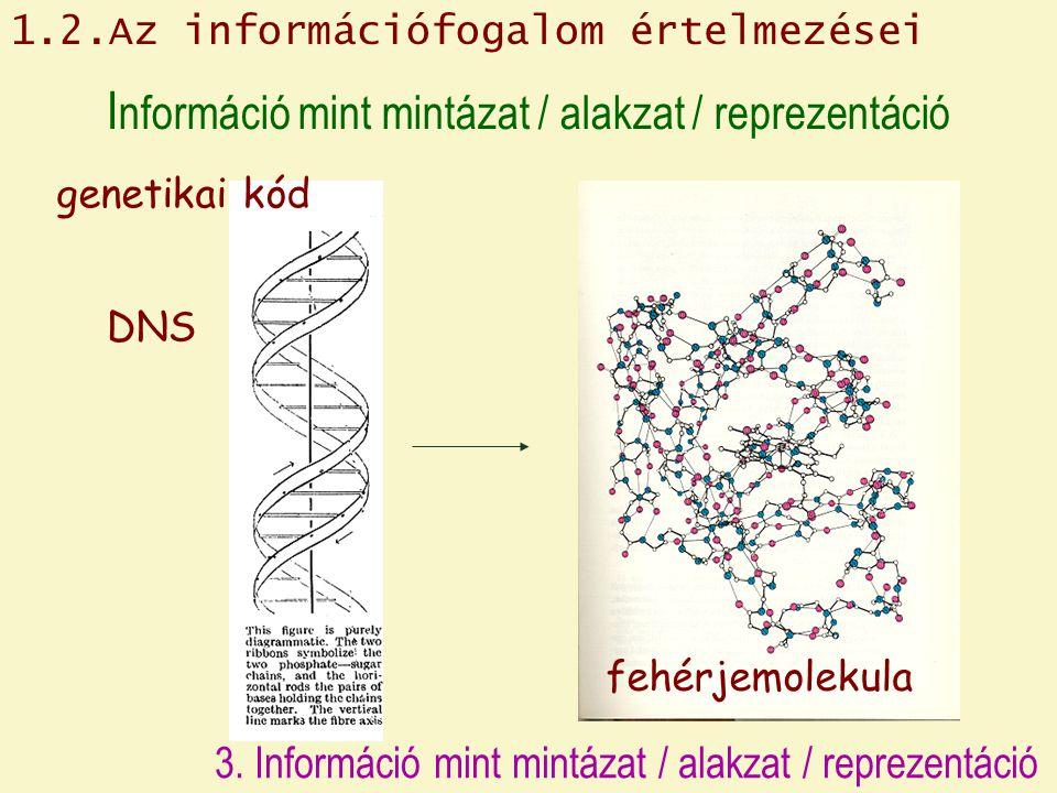 I nformáció mint mintázat / alakzat / reprezentáció DNS genetikai kód fehérjemolekula 1.2.Az információfogalom értelmezései 3. Információ mint mintáza