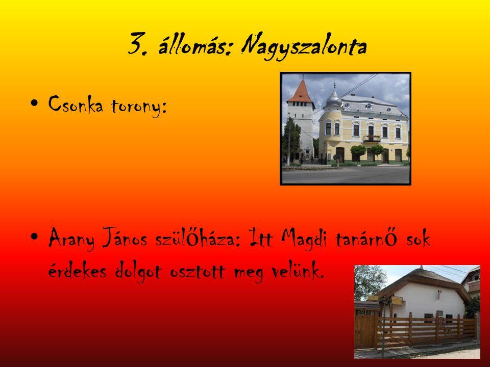 3. állomás: Nagyszalonta Csonka torony: Arany János szül ő háza: Itt Magdi tanárn ő sok érdekes dolgot osztott meg velünk.