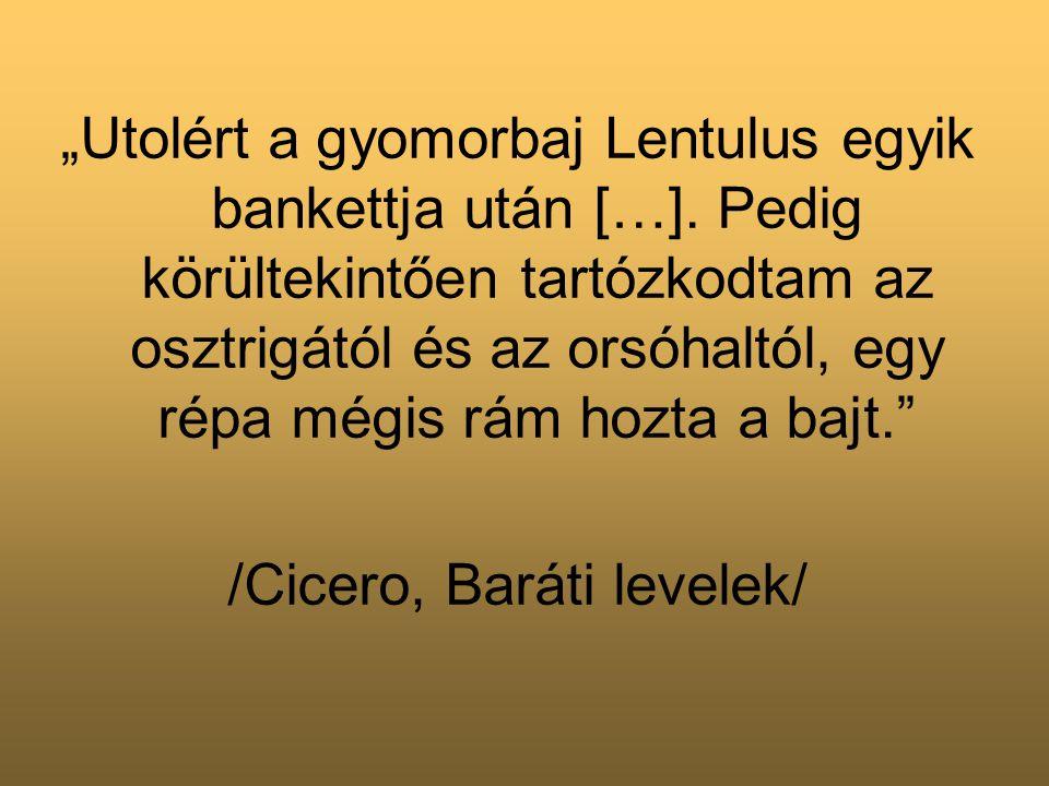 """""""Utolért a gyomorbaj Lentulus egyik bankettja után […]."""