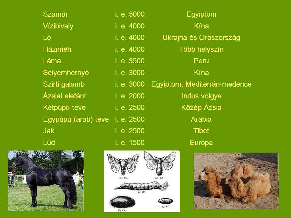 Szamár i. e. 5000Egyiptom Vízibivaly i. e. 4000Kína Ló i. e. 4000Ukrajna és Oroszország Háziméh i. e. 4000Több helyszín Láma i. e. 3500Peru Selyemhern