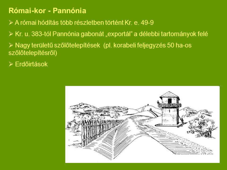 """Római-kor - Pannónia  A római hódítás több részletben történt Kr. e. 49-9  Kr. u. 383-tól Pannónia gabonát """"exportál"""" a délebbi tartományok felé  N"""