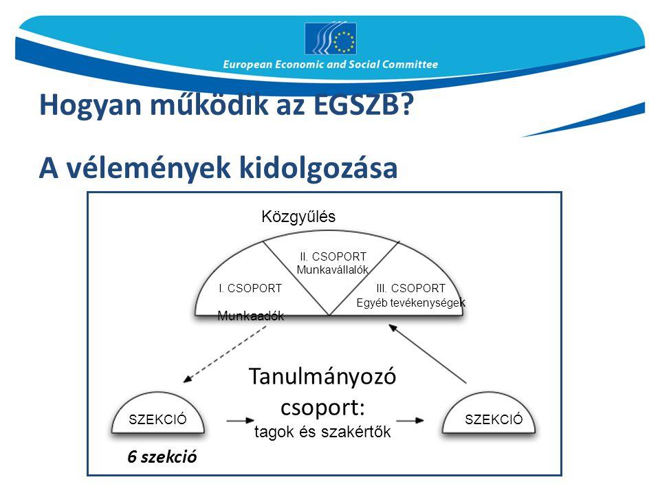 Hogyan működik az EGSZB? A vélemények kidolgozása 6 szekció Közgyűlés II. CSOPORT Munkavállalók I. CSOPORT Munkaadók III. CSOPORT Egyéb tevékenysége k