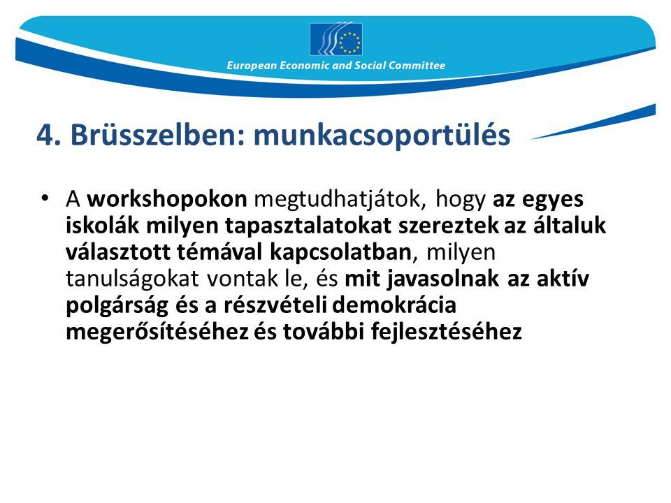 4. Brüsszelben: munkacsoportülés A workshopokon megtudhatjátok, hogy az egyes iskolák milyen tapasztalatokat szereztek az általuk választott témával k