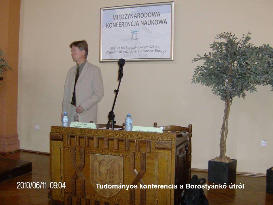 Tudományos konferencia a Borostyánkő útról