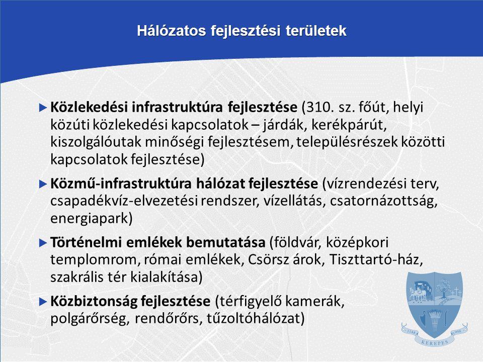 Hálózatos fejlesztési területek  Közlekedési infrastruktúra fejlesztése (310. sz. főút, helyi közúti közlekedési kapcsolatok – járdák, kerékpárút, ki