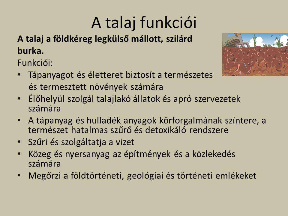A talaj funkciói A talaj a földkéreg legkülső mállott, szilárd burka. Funkciói: Tápanyagot és életteret biztosít a természetes és termesztett növények