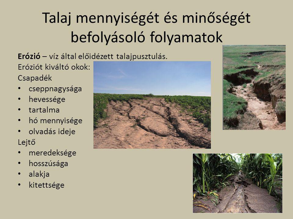 Talaj mennyiségét és minőségét befolyásoló folyamatok Erózió – víz által előidézett talajpusztulás. Eróziót kiváltó okok: Csapadék cseppnagysága heves