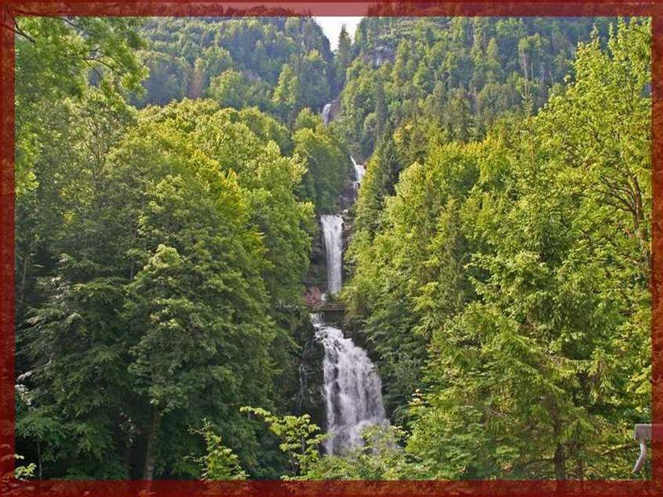 A Giessbach-i vízesés Svájc egyik legszebb vízesése A Giessbach patak a tóparttól 7 km-re ered és a tó szintjénél 900 méterrel magasabban fekvő Axalp lefelé lejtő platóján fut végig, amíg el nem éri a magasvölgy peremét és itt zuhan 300 méter magasból a Brienzi tóba.