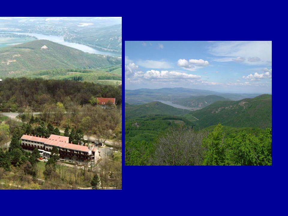 A Visegrádi-hegységben eddig 75 természetes keletkezésű nem karsztos barlangot és 7 barlangnak mondott mesterséges üreget ismertünk meg.