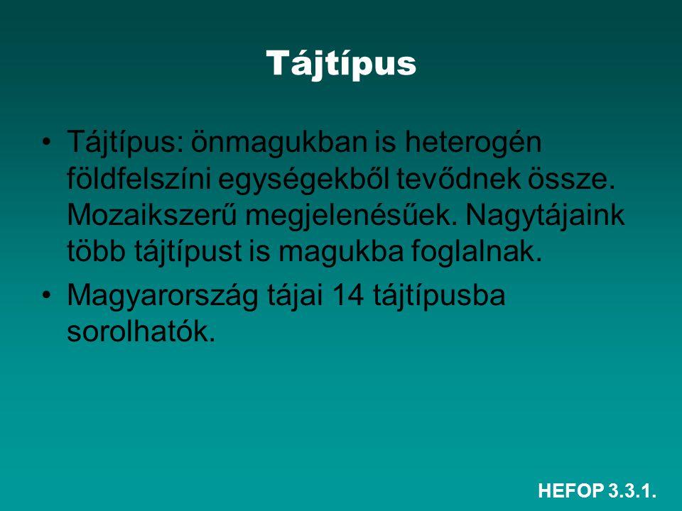 HEFOP 3.3.1. Tájtípus Tájtípus: önmagukban is heterogén földfelszíni egységekből tevődnek össze. Mozaikszerű megjelenésűek. Nagytájaink több tájtípust