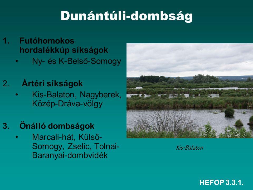 HEFOP 3.3.1. Dunántúli-dombság 1.Futóhomokos hordalékkúp síkságok Ny- és K-Belső-Somogy 2. Ártéri síkságok Kis-Balaton, Nagyberek, Közép-Dráva-völgy 3