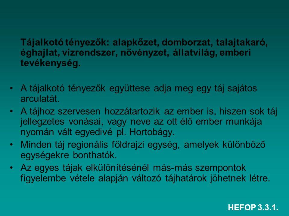 HEFOP 3.3.1. Tájalkotó tényezők: alapkőzet, domborzat, talajtakaró, éghajlat, vízrendszer, növényzet, állatvilág, emberi tevékenység. A tájalkotó tény