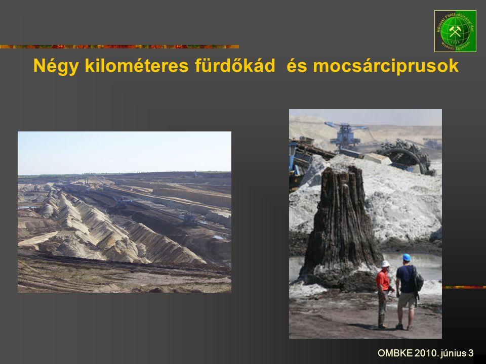 OMBKE 2010. június 3 Négy kilométeres fürdőkád és mocsárciprusok