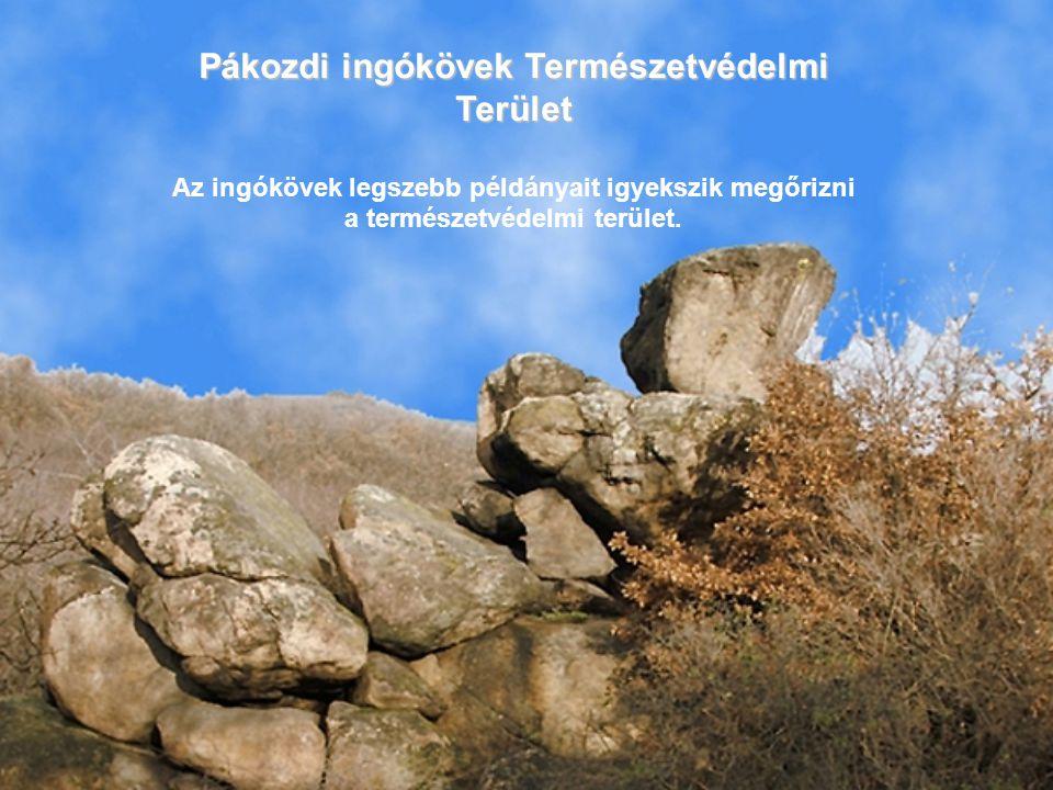 Pákozdi ingókövek Természetvédelmi Terület Az ingókövek legszebb példányait igyekszik megőrizni a természetvédelmi terület.