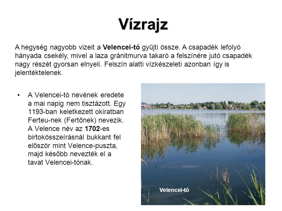 A Velencei-tó nevének eredete a mai napig nem tisztázott. Egy 1193-ban keletkezett okiratban Ferteu-nek (Fertőnek) nevezik. A Velence név az 1702-es b