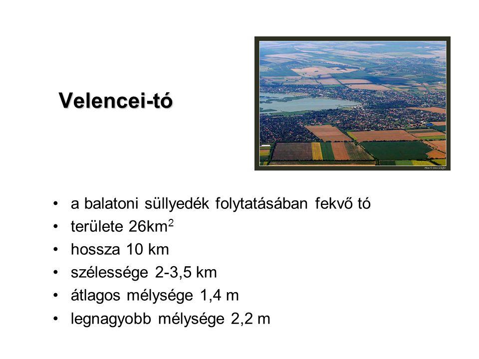 a balatoni süllyedék folytatásában fekvő tó területe 26km 2 hossza 10 km szélessége 2-3,5 km átlagos mélysége 1,4 m legnagyobb mélysége 2,2 m Velencei-tó