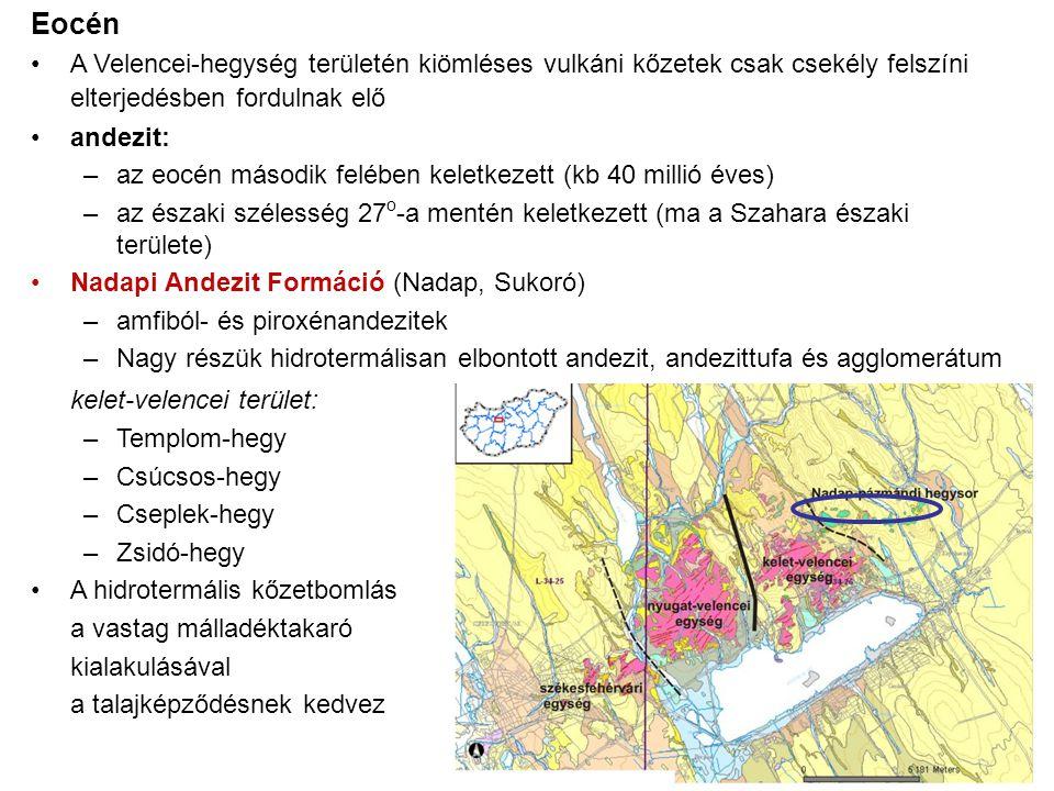 Eocén A Velencei-hegység területén kiömléses vulkáni kőzetek csak csekély felszíni elterjedésben fordulnak elő andezit: –az eocén második felében keletkezett (kb 40 millió éves) –az északi szélesség 27 o -a mentén keletkezett (ma a Szahara északi területe) Nadapi Andezit Formáció (Nadap, Sukoró) –amfiból- és piroxénandezitek –Nagy részük hidrotermálisan elbontott andezit, andezittufa és agglomerátum kelet-velencei terület: –Templom-hegy –Csúcsos-hegy –Cseplek-hegy –Zsidó-hegy A hidrotermális kőzetbomlás a vastag málladéktakaró kialakulásával a talajképződésnek kedvez