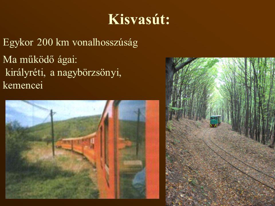 Kisvasút: Egykor 200 km vonalhosszúság Ma működő ágai: királyréti, a nagybörzsönyi, kemencei