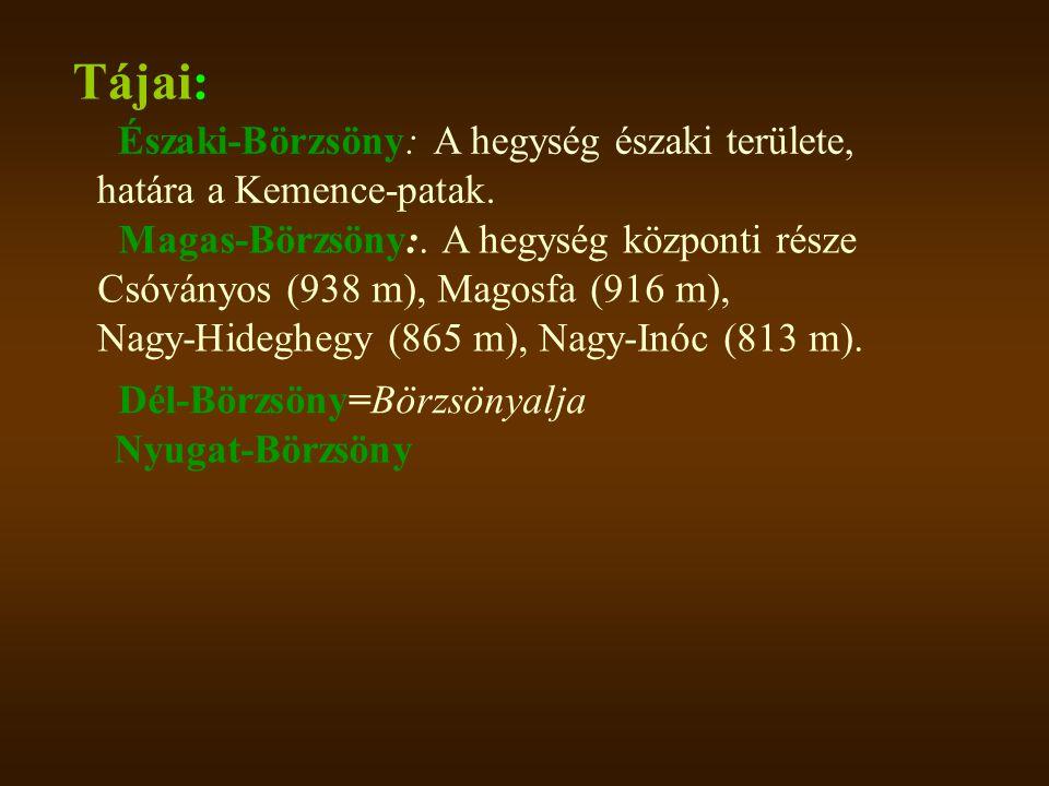 Tájai: Északi-Börzsöny: A hegység északi területe, határa a Kemence-patak. Magas-Börzsöny:. A hegység központi része Csóványos (938 m), Magosfa (916 m