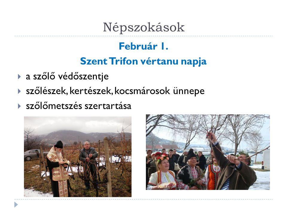 Népszokások Február 1. Szent Trifon vértanu napja  a szőlő védőszentje  szőlészek, kertészek, kocsmárosok ünnepe  szőlőmetszés szertartása