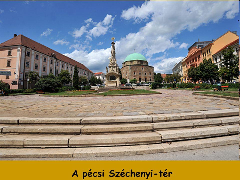 Ez a tér a város közigazgatási, kereskedelmi és idegenforgalmi központja. A középkorban piactér állt itt. Mostani nevét 1864 óta viseli. A tér a város