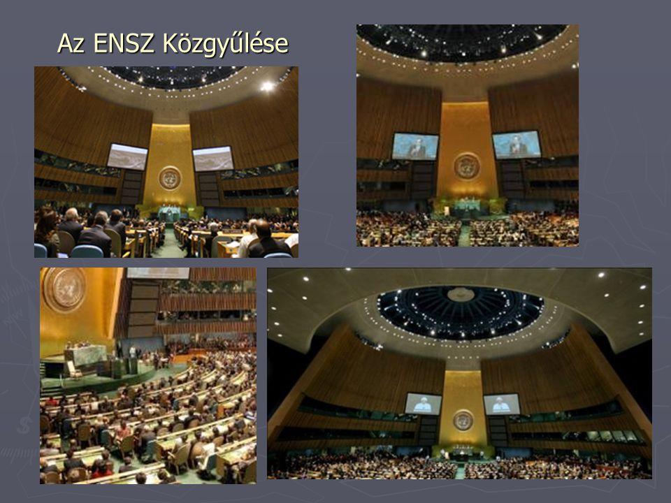 Az ENSZ Közgyűlése
