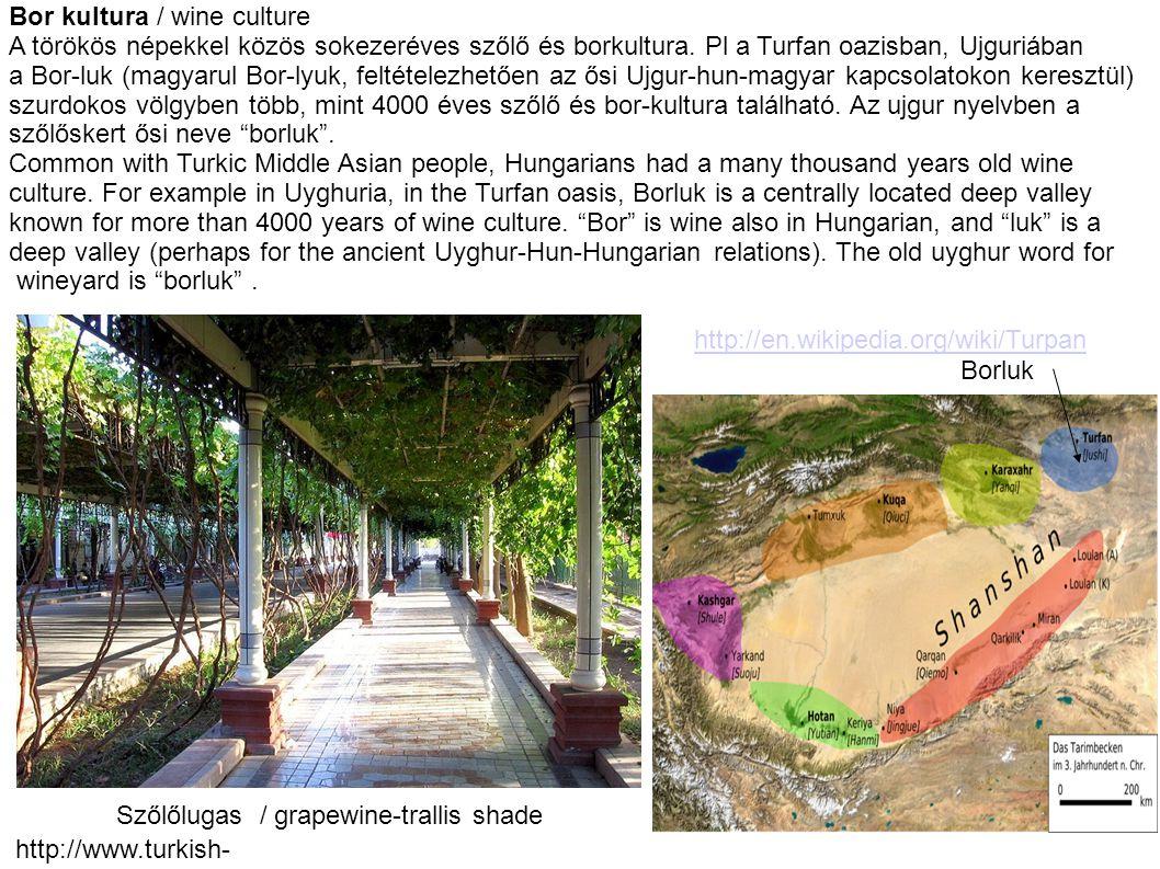 Bor kultura / wine culture A törökös népekkel közös sokezeréves szőlő és borkultura. Pl a Turfan oazisban, Ujguriában a Bor-luk (magyarul Bor-lyuk, fe