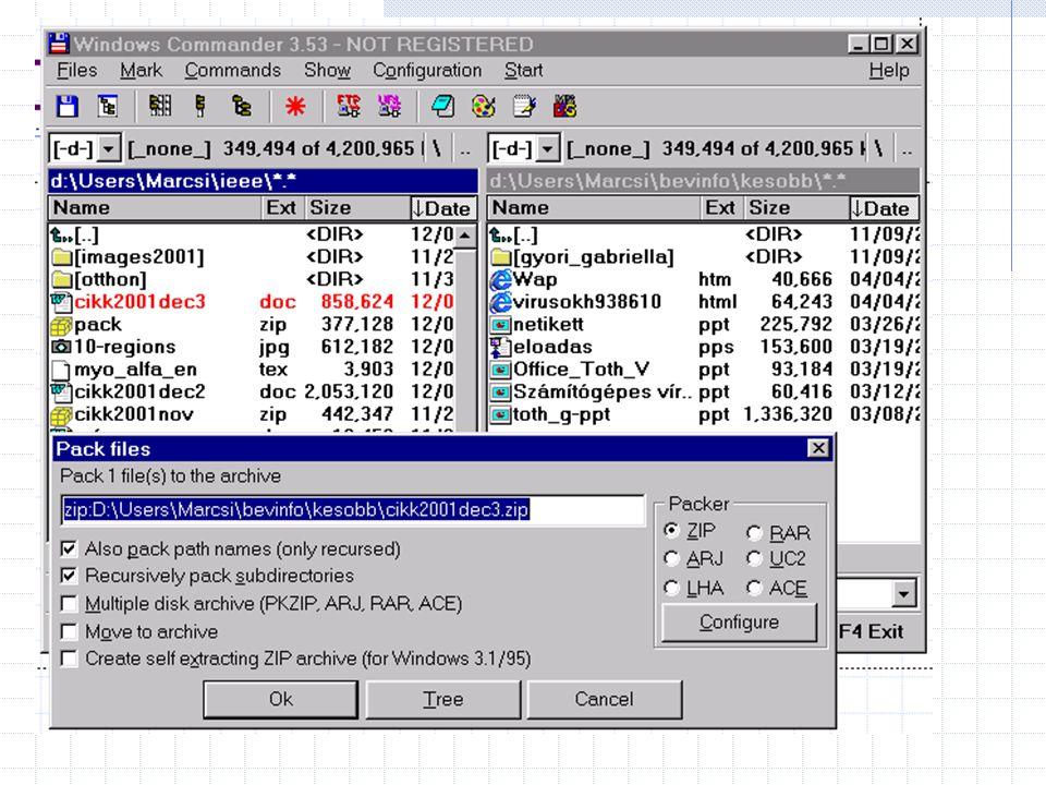 Számítógépes vírusok és az ellenük való védekezés Készítette: Hajlamász Zsolt 2001. Március 12.