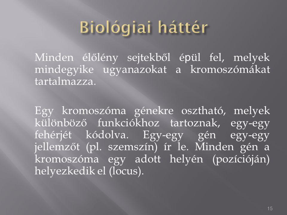 Minden élőlény sejtekből é p ül fel, melyek mindegyike ugyanazokat a kromoszómákat tartalmazza. Egy kromoszóma génekre osztható, melyek különböző funk