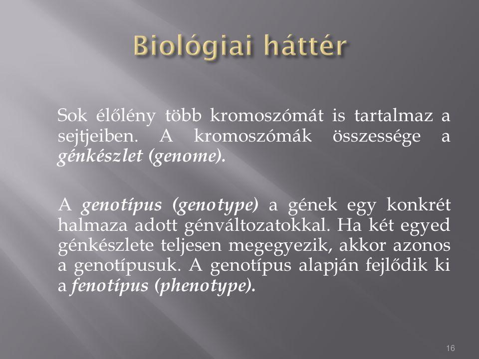 Sok élőlény több kromoszómát is tartalmaz a sejtjeiben. A kromoszómák összessége a génkészlet (genome). A genotípus (genotype) a gének egy konkrét hal