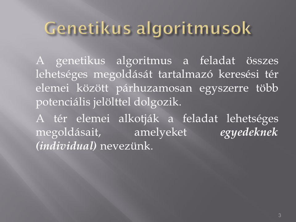 A genetikus algoritmus a feladat összes lehetséges megoldását tartalmazó keresési tér elemei között párhuzamosan egyszerre több potenciális jelölttel