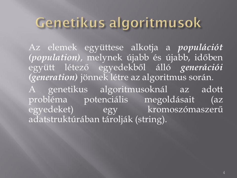 Az elemek együttese alkotja a populációt (population), melynek újabb és újabb, időben együtt létező egyedekből álló generációi (generation) jönnek lét