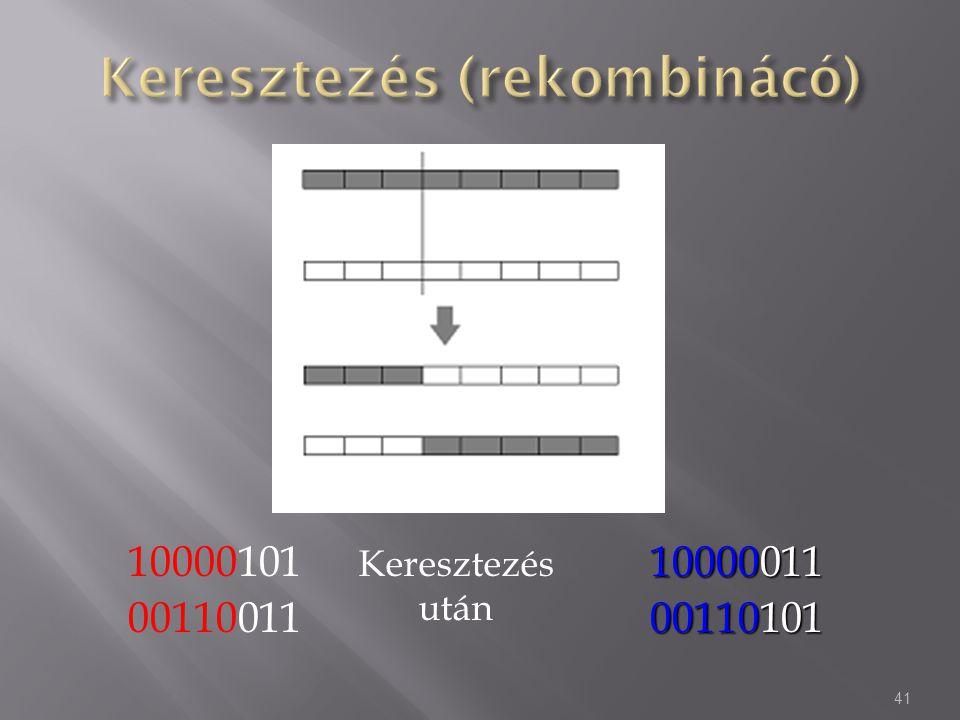 10000101 00110011 41 10000011 00110101 Keresztezés után