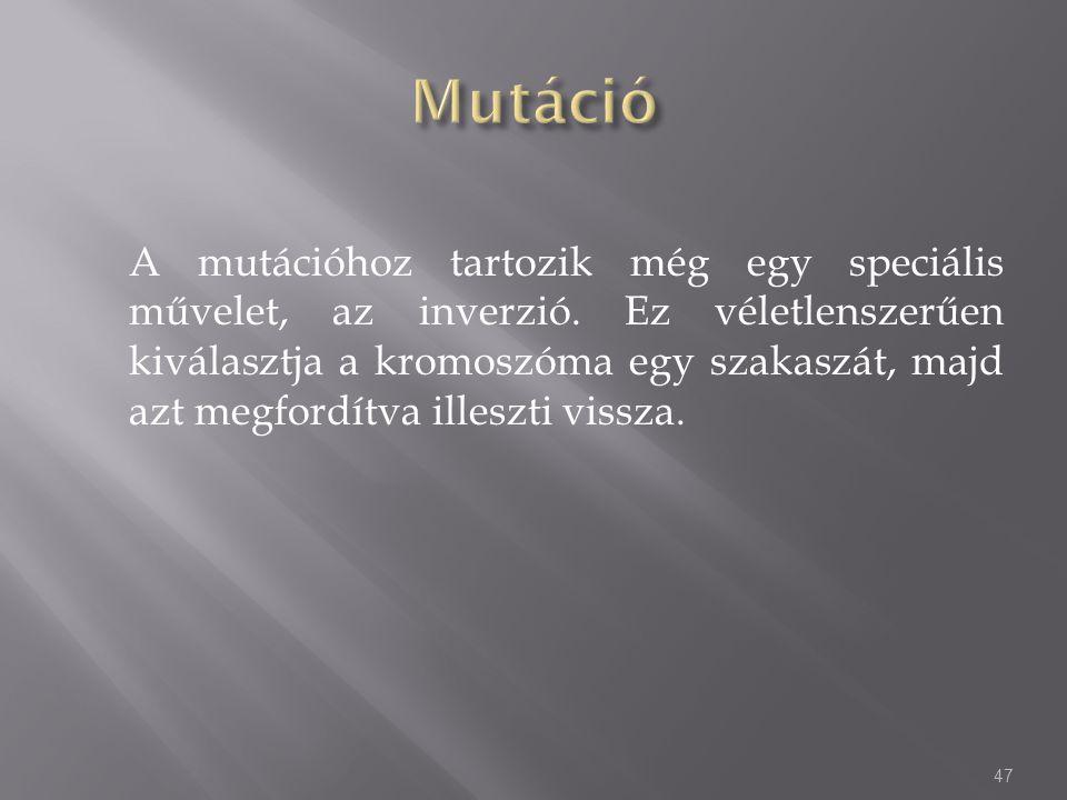 A mutációhoz tartozik még egy speciális művelet, az inverzió. Ez véletlenszerűen kiválasztja a kromoszóma egy szakaszát, majd azt megfordítva illeszti