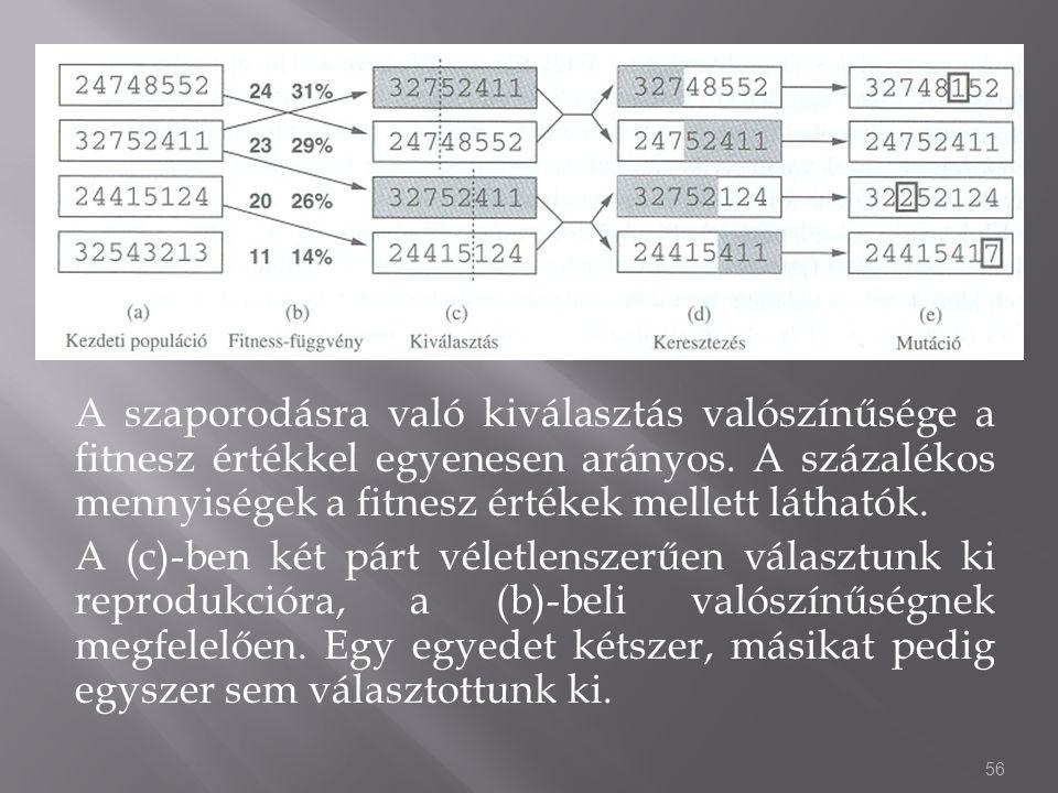 A szaporodásra való kiválasztás valószínűsége a fitnesz értékkel egyenesen arányos. A százalékos mennyiségek a fitnesz értékek mellett láthatók. A (c)
