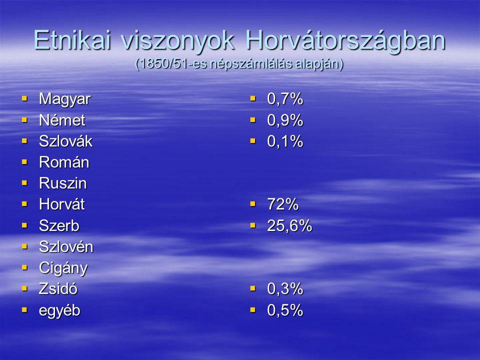 Etnikai viszonyok Horvátországban (1850/51-es népszámlálás alapján)  Magyar  Német  Szlovák  Román  Ruszin  Horvát  Szerb  Szlovén  Cigány  Zsidó  egyéb  0,7%  0,9%  0,1%  72%  25,6%  0,3%  0,5%
